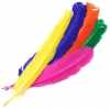 "Turkey Quills 14"" Multi Bright Mixed Colors"